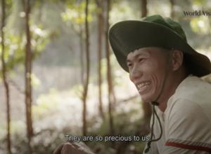 Vươn tới tương lai | Minh